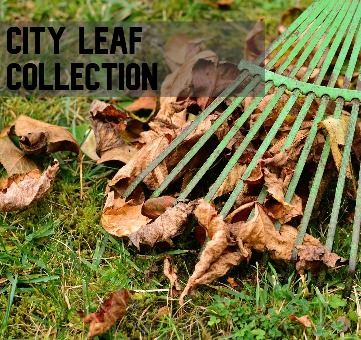 City Leaf Collection