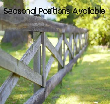 Seasonal Positions Available